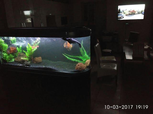 Новая квартира с барным аквариумом - Чернівці - อพาร์ทเมนท์