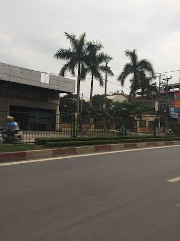 Lexing 1137 full Thanh Hoa