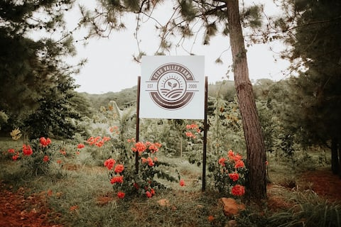 Cegu Valley Family Farm and Forest