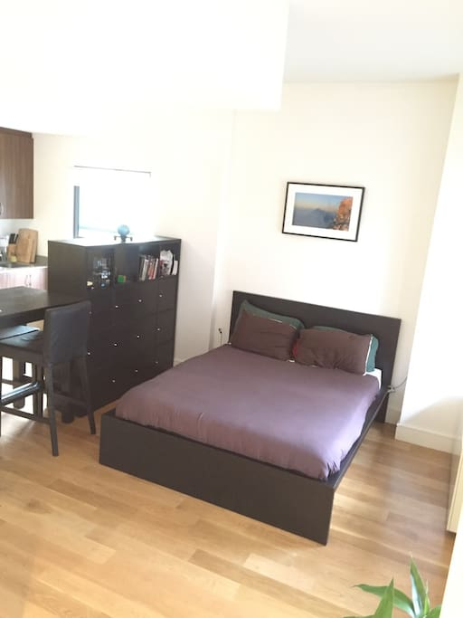 beautiful studio apartment apartments for rent in new