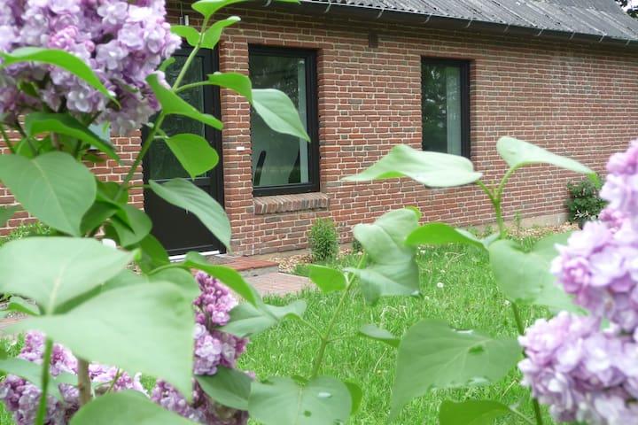 """Ferienhaus  """"Grenzhuus"""", idyllisch - Weesby - Hus"""
