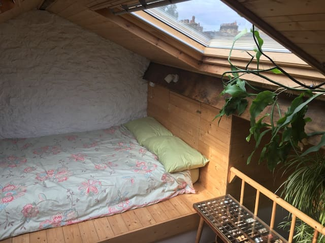 Sunny spacious room in central Lancaster.