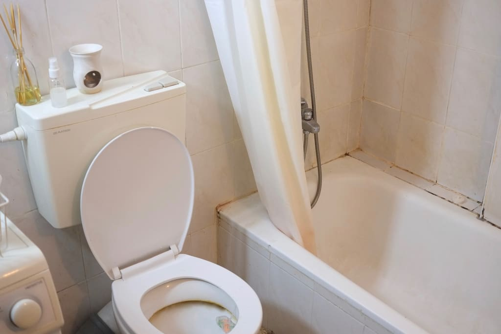Bathroom (with laundry machine)