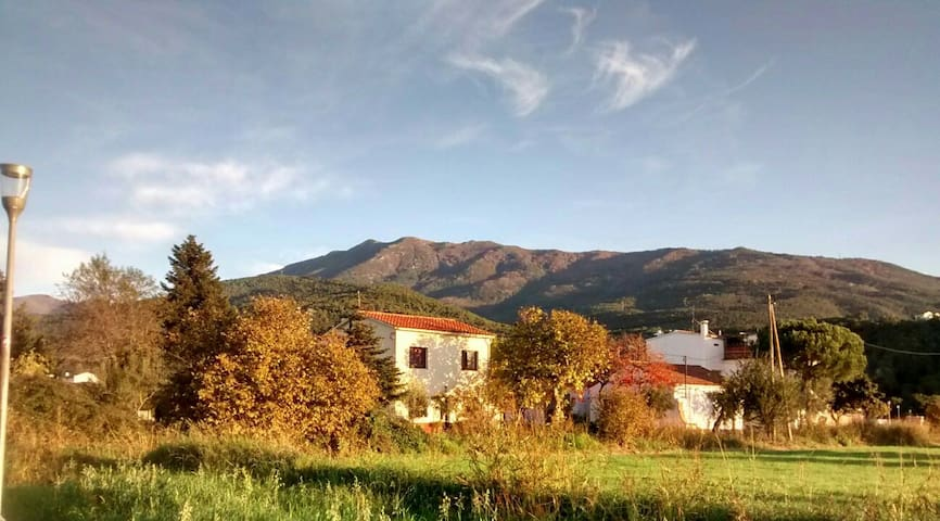 Montseny's Nat. Parc(not available now sorry)