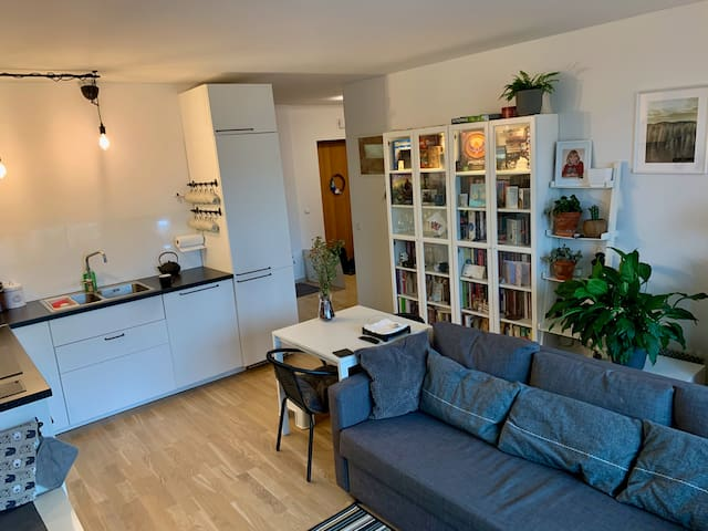 Cosy apartment near park