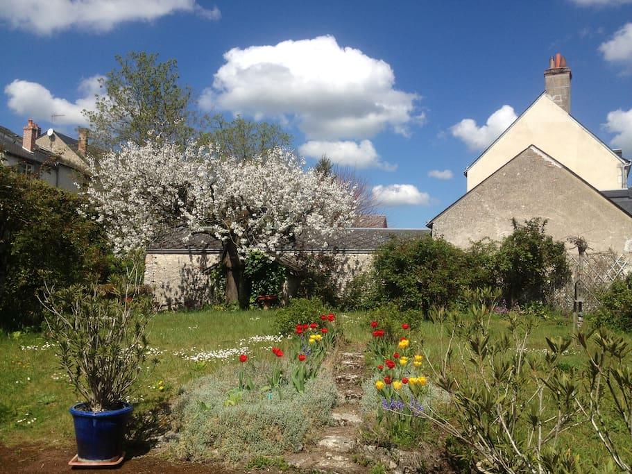 Le magnifique jardin vue de la cour