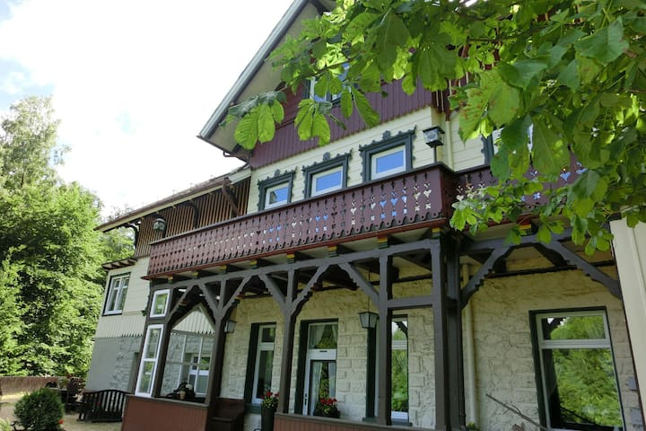 Rustic Apartment with Garden in Bad Harzburg Germany