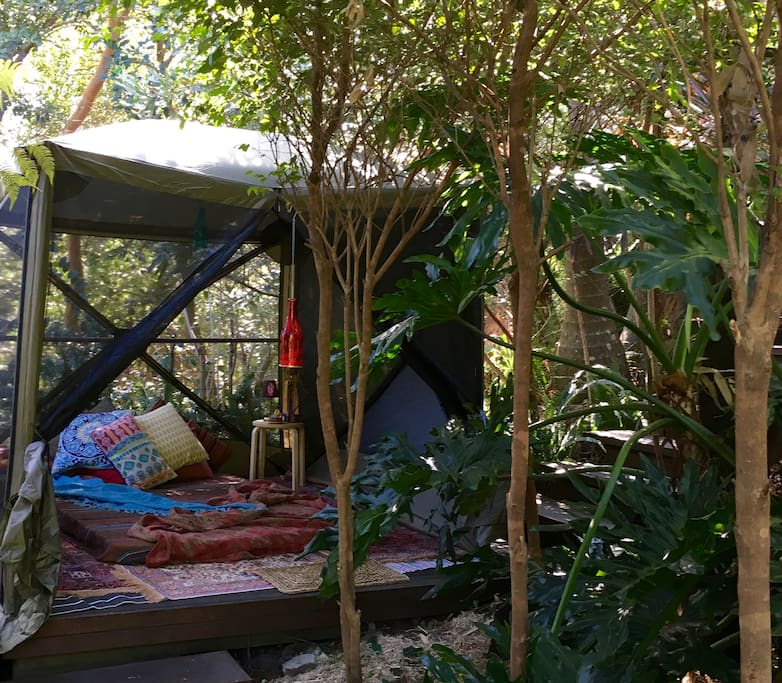 For no additional fee, we can set up either of our rainforest tents.  Choice of 'old school' canvas swag tent  or a screen house enclosure with optional hard sides like this one.