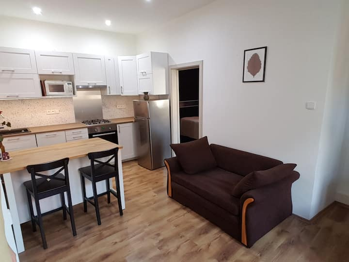 Cozy modern flat 2+kk, Prague  - no extra charge
