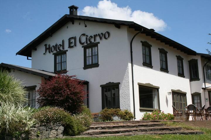 Hotel El Ciervo-Villarrica