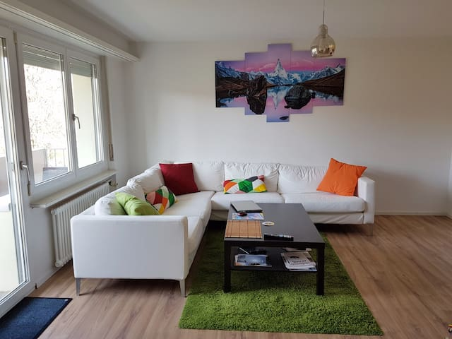 Sunny and bright apartment for Baselworld - Allschwil