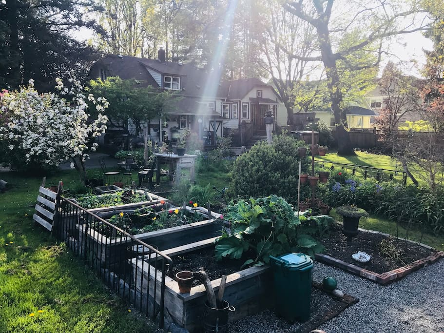 We have a large yard and garden