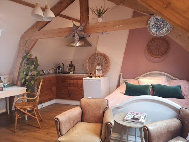Cozy attic ctr near Amsterdam & the beach.