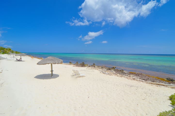 Luxury quiet beachfront w/coral reef snorkeling