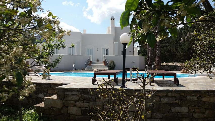 Villa Themis with swimming pool in a garden.