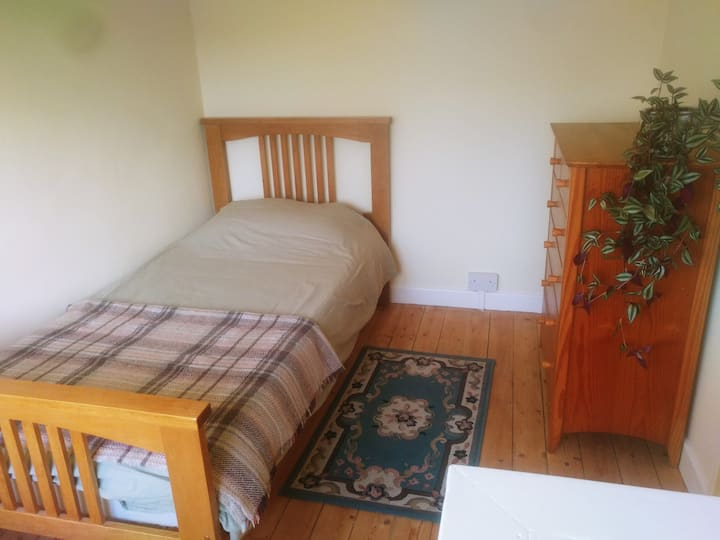 Bright, single room in spacious house.