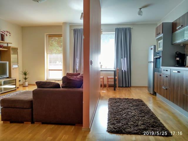 Spacious, cozy 3-rooms Flat in Kadriorg.