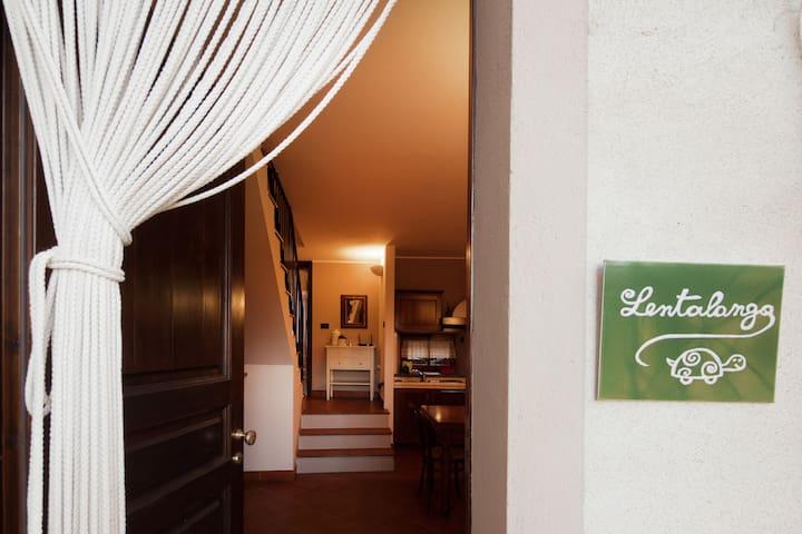 Lentalanga, casa vacanze in langa - Valle Talloria - House