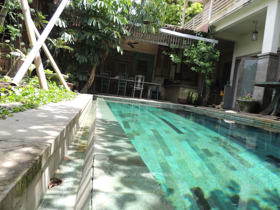 Mesui Home- cheap apartments with pool & free Wifi ...