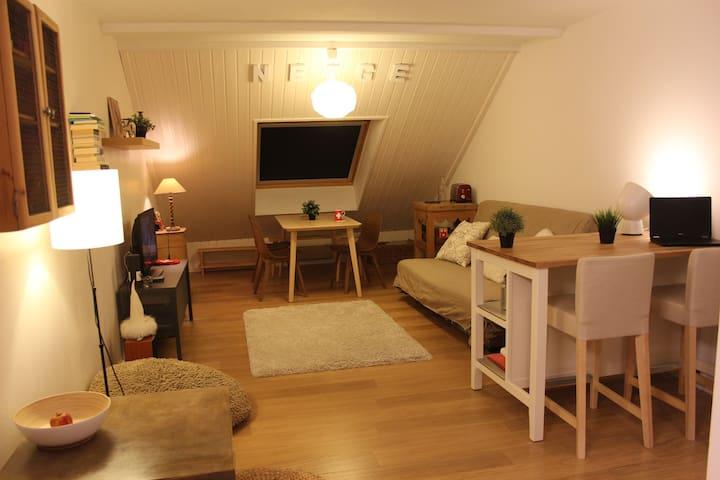 Grand studio chaleureux, pied des pistes Métabief