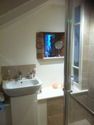 Ensuite Electric Shower (Walk-in) Toilet and Wash Basin