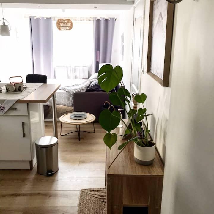 Studio cosy au cœur des montagnes de Savoie