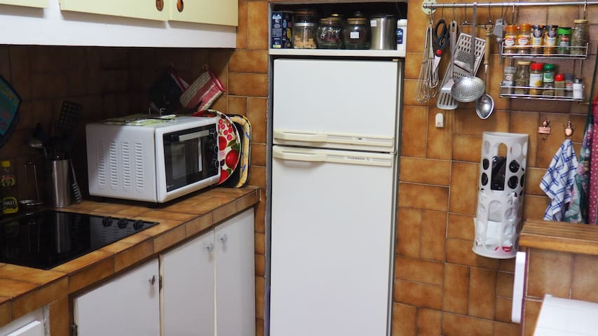 Kitchen with benchtop oven, hotplates and full sized refrigerator