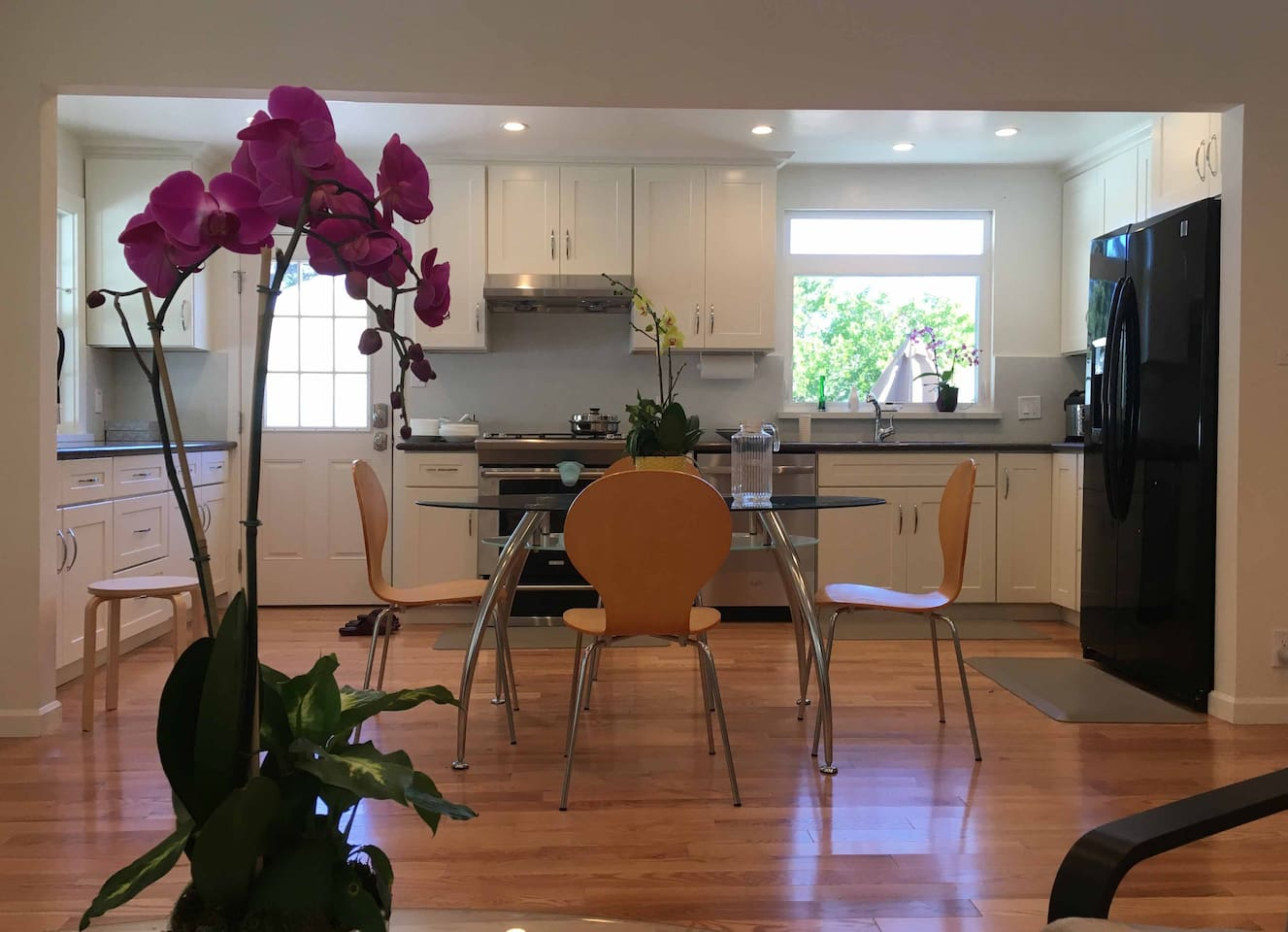 Open uncluttered area living and kitchen space