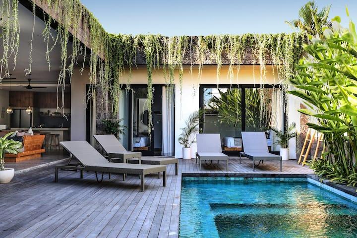New Modern 3BD Luxe Villa Canggu