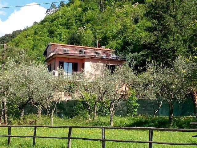La casa del Grillo, sulla collina Toscana