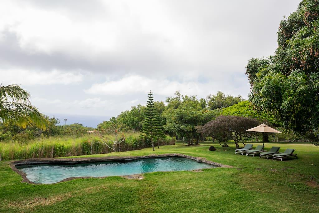 Ocean view pool deck great for yoga