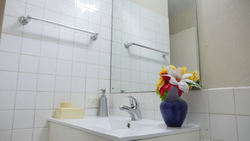 Secure 1Bd 1Bth Apt near New Kgn