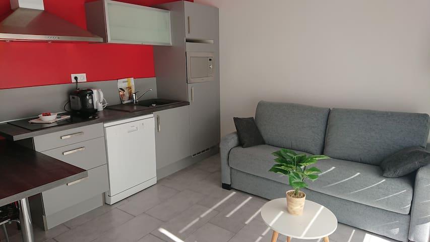 Appartement 3* tout confort terrasse parking (104)