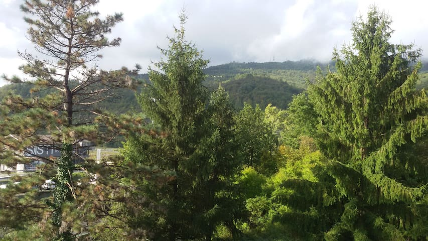Next stop : Cinque Terre!