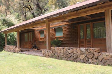 Cabañas ecológicas en medio del bosque - Valle de Bravo - Nature lodge