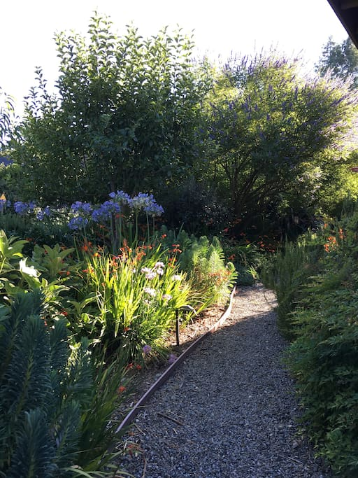 path from car park to guest house