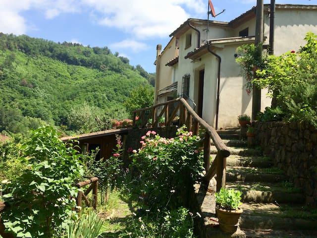 Benvenuti in Paradiso! Welcome in Tuscany!