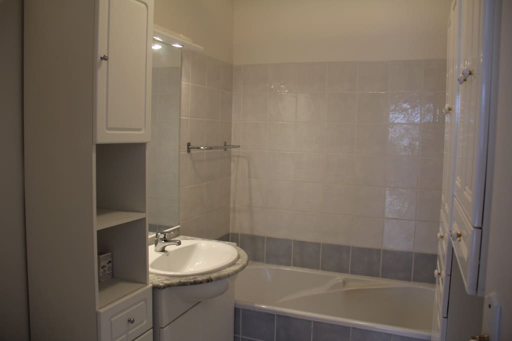 La salle de bain + WC