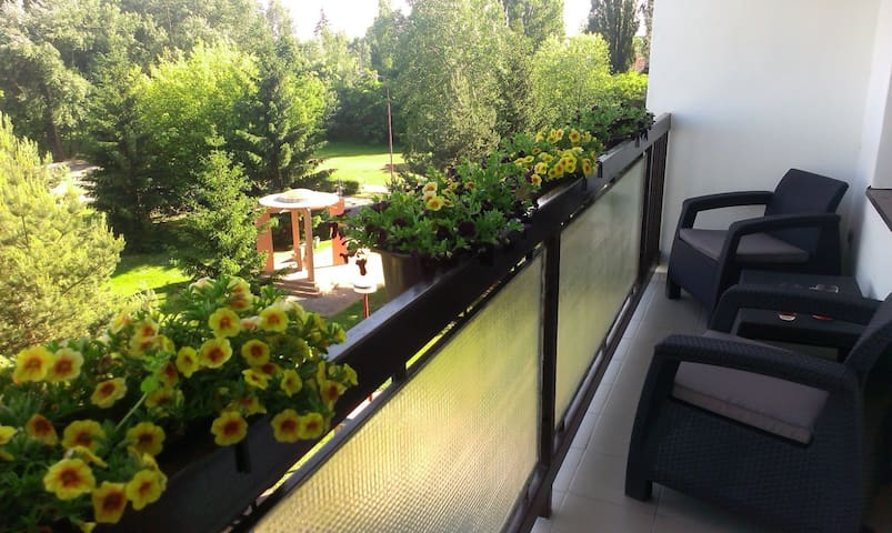 Cosy and Sunny Apartment with Balcony