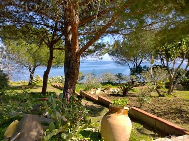 La Ridente, casa con parco sul mare. - Province of Messina