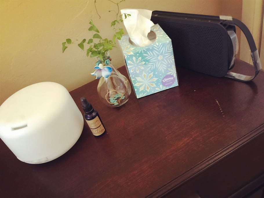 Humidifier attached Lavender Essential oil  & Bluetooth speaker