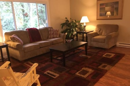 City Convenience, Country Feel - Elk River - House