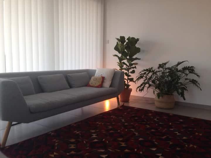 Unique Designed Flat Nicosia