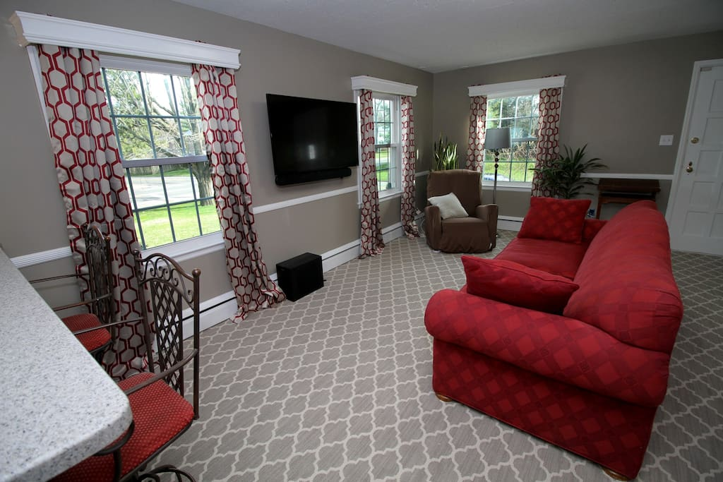 Cozy living room with pull out couch