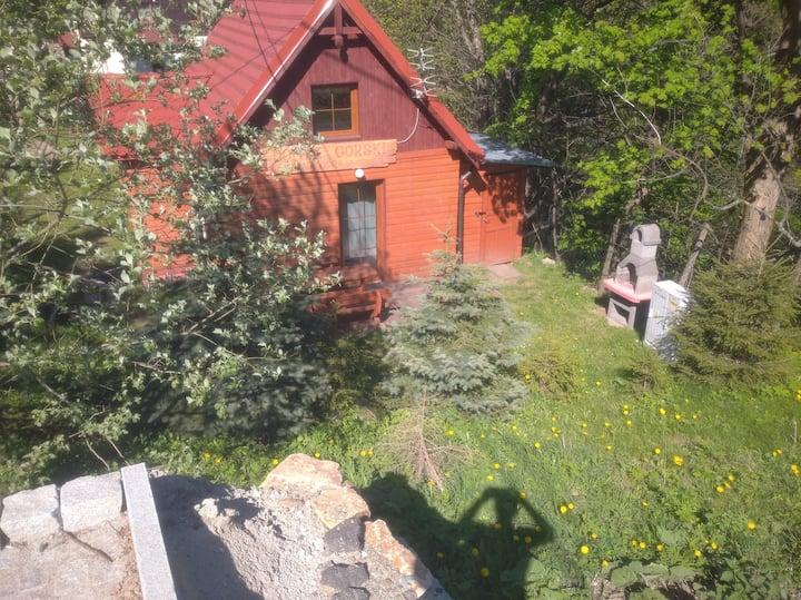 Domek Górski Czarna Góra 4-5 osobow