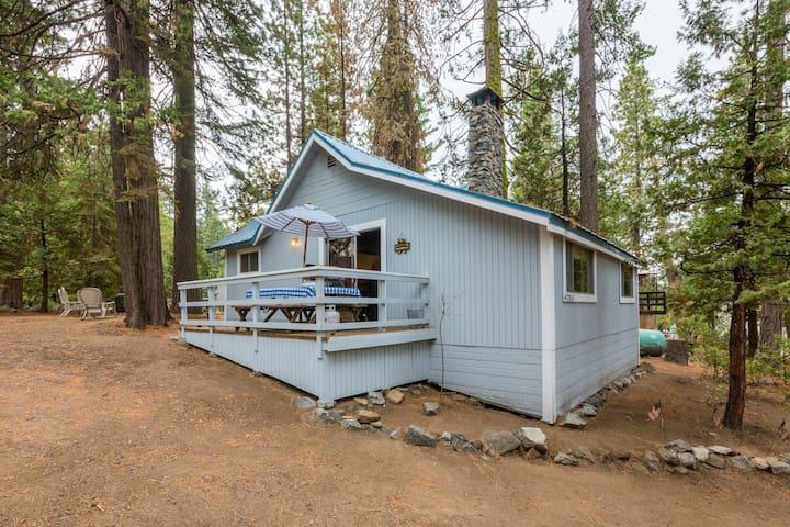 Cute 2B/1B cabin in the West Village