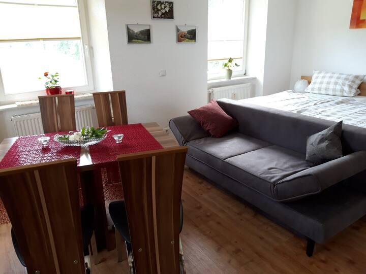 Offenburger Hof, (Schuttertal), Ferienwohnung Isabell, 30qm, 1 Wohn-/Schlafraum, max. 2 Personen