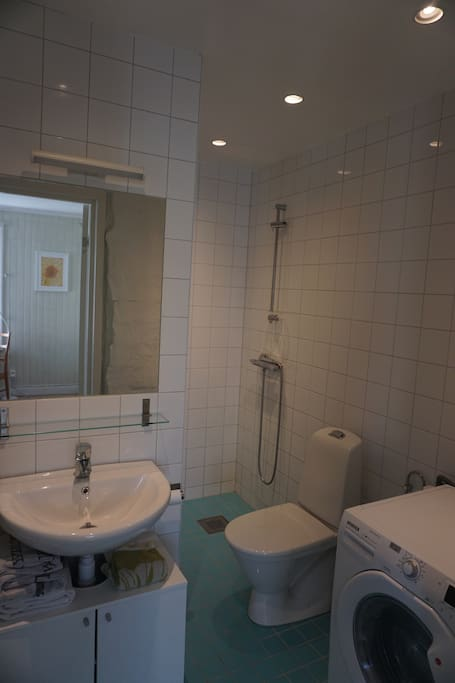Bathroom; toilet, shower, wachmaschine/dryer