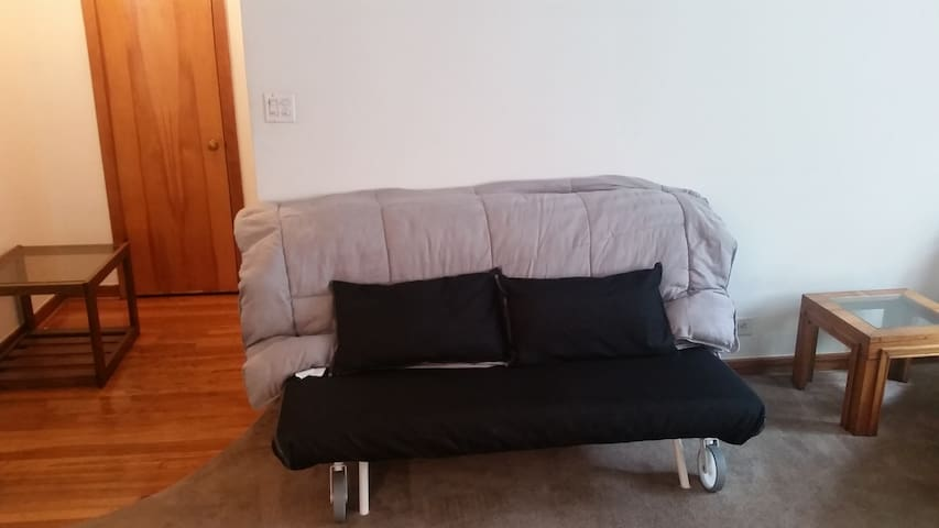 05b. Queen futon in Common Room - Chicago - Huoneisto