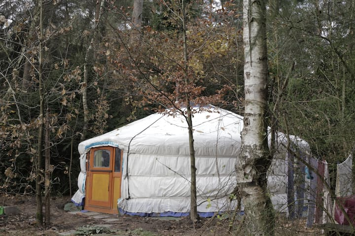 Yurt Nyima: zonnestraal :-) - Schilde - Nature lodge